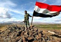 Франция признала победу Асада в Сирии