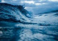 Стало известно, сколько «прибавил» Мировой океан за 25 лет