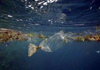 Стало известно, что сильнее всего загрязняет Мировой океан