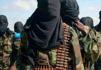 В СНГ обеспокоены новой угрозой вербовщиков ИГИЛ