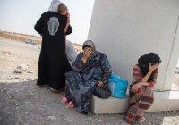 Вдовы боевиков ИГИЛ хотят вернуться в Россию