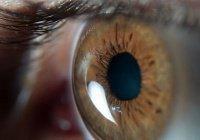 Люди могут массово ослепнуть из-за мутировавшей инфекции