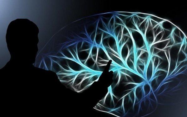 Влияние еды на мозг