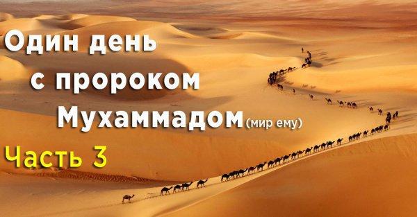 Жизнеописание Пророка (мир ему)