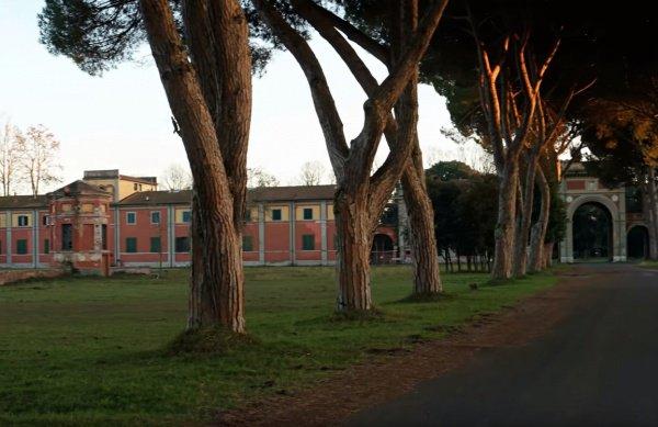 Церемония пройдет в университете Пизы.