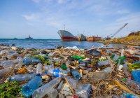 Запущена система по очистке океана от пластика