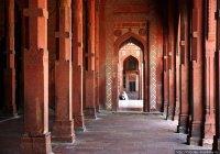 Житель Индии поразил своим отношением к мечети