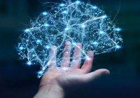 Нейросети повлияют на людей сильнее, чем паровой двигатель