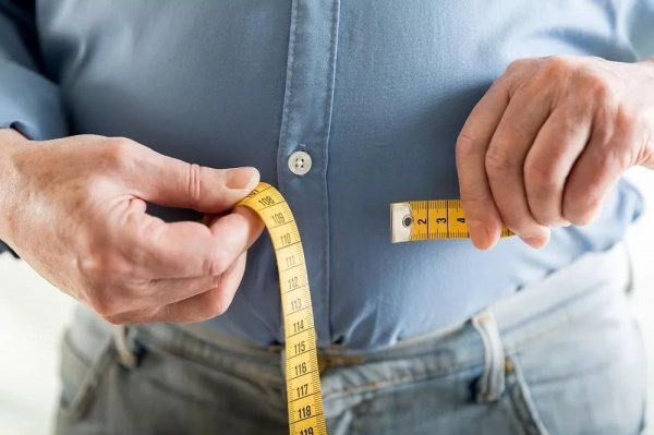 Здоровые мыши не только быстрее, но также и умнее, чем их собратья с избыточным весом