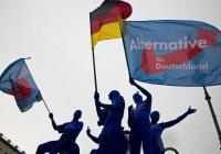 Исламофобская партия бьет рекорды популярности в Германии