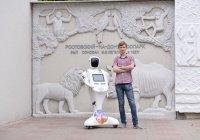 В зоопарке Ростова-на-Дону наняли на работу робота-кассира