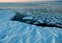 Ученые описали масштабы климатической катастрофы