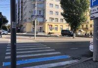 В Саратове зебру раскрасили в синий цвет (ФОТО)