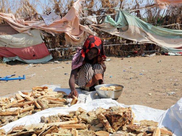 Жители Йемена продолжают страдать от голода.
