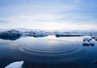 Добывать редкие металлы со дна Арктики будут роботы