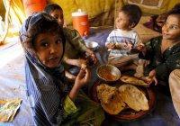 ООН готова официально объявить в Йемене голод