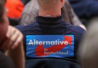 Иудеи Германии возмущены созданием «еврейского крыла» в праворадикальной партии