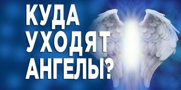 Главная обязанность ангелов.