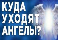 Что происходит с ангелами-хранителями после смерти человека?