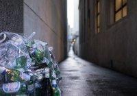 В Швейцарии мужчина сядет в тюрьму из-за мусора