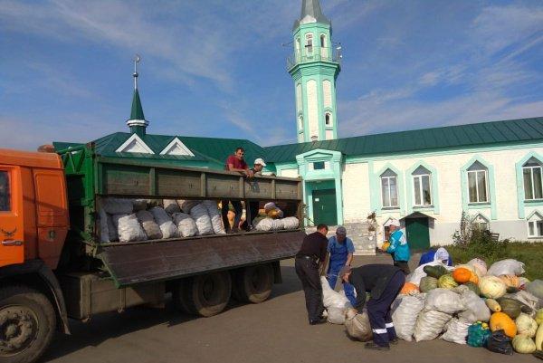 Нуждающиеся получили овощи от сельчан Татарстана.