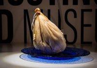 Музей отвратительной еды откроют в Швеции