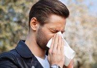 Следуем Сунне: Как укрепить свое здоровье осенью?