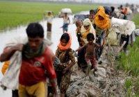 Индию уличили в депортации мусульман-рохинджа