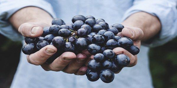 Земные плоды - это благословение от Аллаха