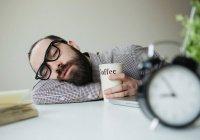 Ученые: дневной сон поможет принять важные решения