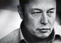 Компания Tesla ищет замену Илону Маску