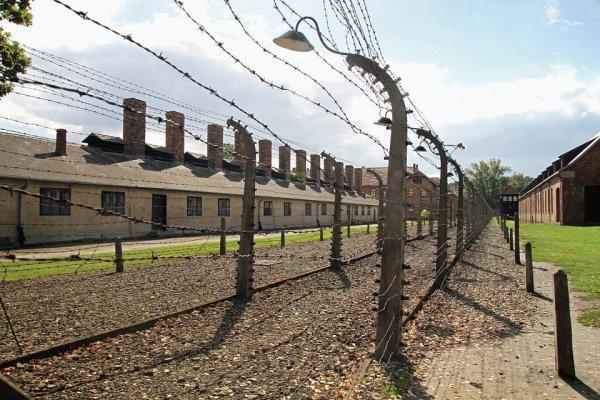 Жителю Ирландии предстоит суд за вандализм в Освенциме.