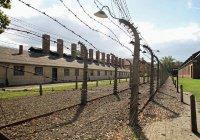 Ирландца задержали за осквернение Освенцима