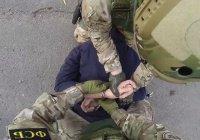 В Томской области раскрыта спящая ячейка террористов