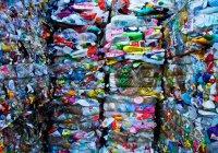Greenpeace перечислила главных виновников загрязнения планеты