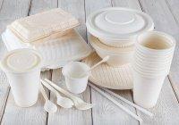 Одноразовую посуду могут полностью запретить в Евросоюзе