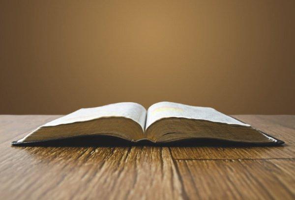 Перевести Библию на все языки мира планируется к 2025 году.