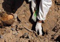 В сирийской Ракке нашли крупнейшее захоронение жертв ИГИЛ