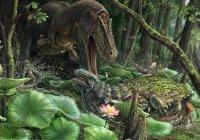 В США найден новый родственник тираннозавра