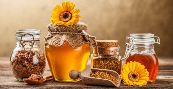 Мед – это лекарство от всех телесных болезней