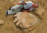 Следы гигантского динозавра обнаружены в пустыне Гоби