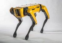 Роботы Boston Dynamics были признаны бесполезными