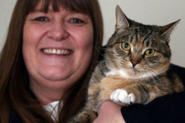 Она номинировала любимицу на награду «Кот-герой» в соревновании «Кошка года»