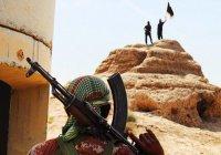 700 сирийских беженцев оказались в плену ИГИЛ в Сирии