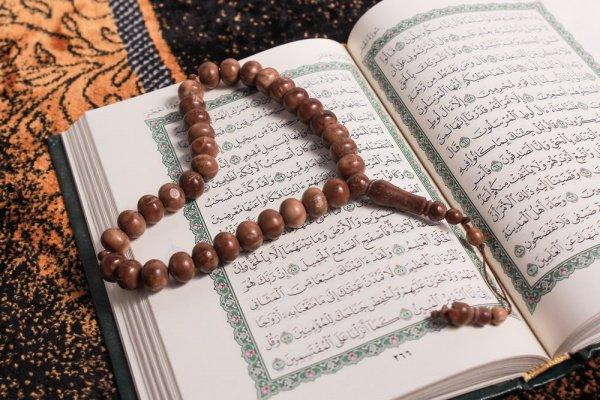 Исламская психология - относительно новое направление в науке.