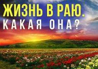 Какими будут наши родители в Раю и сможем ли мы с ними увидеться?