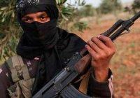 Пентагон: число ежемесячно прибывающих в Сирию и Ирак боевиков сократилось до 100