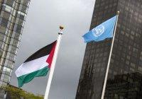 """Палестина возглавит """"Большую семёрку"""" развивающихся стран"""
