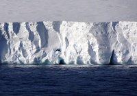 Пение льдов Антарктиды напугало ученых (ВИДЕО)