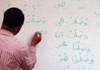 В мире резко сократилось число желающих изучать арабский язык